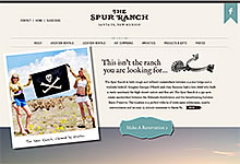 Website Design Spur